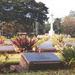 Hadifogoly-temető