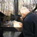 079 Budakeszi Vadaspark kecskesimogatás