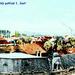 1900 - Panoramatický pohľad na mesto Lučenec pravá časť