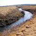 35. Sopron megtisztított szennyvizével bővült Ikva patak