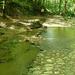 Cuha patak völgye