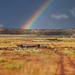 US 2010 Day24  077 Rainbow In Utah