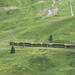 Svájc, Jungfrau Region, a Kleine Scheidegg-Grindelwald-i fogaske