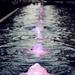 Rózsaszín víz
