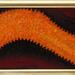 Narancs folt 2007