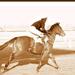 Régi lovi