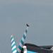 Kismadár-nagymadár