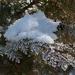 téli képek, hó és zúzmara